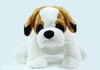 白色沙皮狗