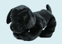 萌宠小黑狗