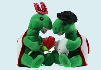 情人节对龟