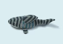 鲨鱼婴儿玩具